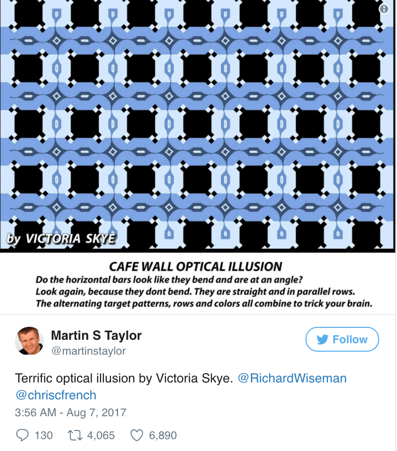 Awesome optical illusion by Victoria Skye tweeted by Martin S Taylor