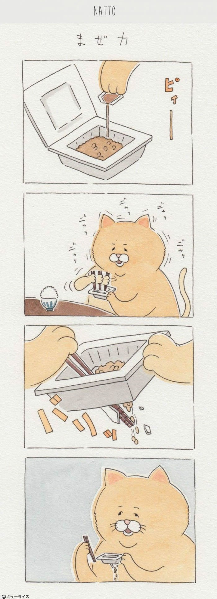 funny comic about cat eating out of soggy take away canisters.