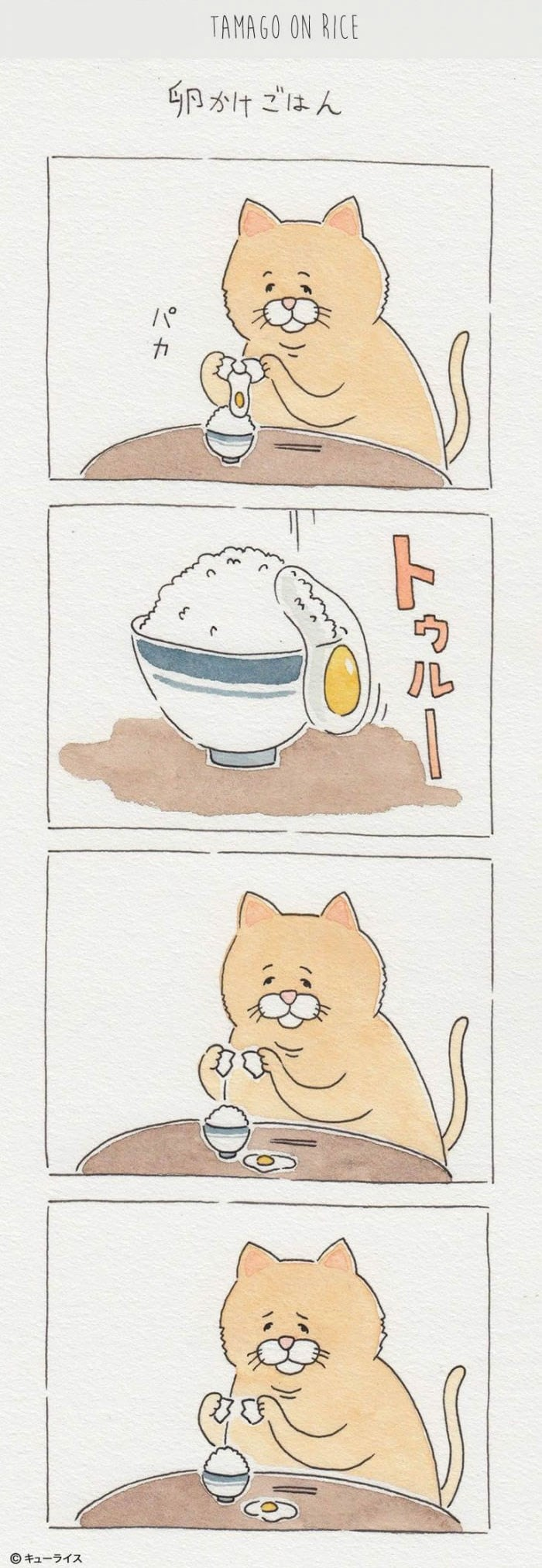 sliding egg fail cat comic