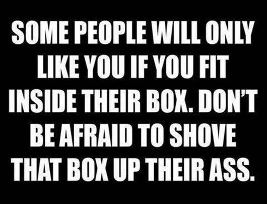 quote - Font - SOME PEOPLE WILL ONLY LIKE YOU IF YOU FIT INSIDE THEIR BOX. DON'T BE AFRAID TO SHOVE THAT BOX UP THEIR ASS.