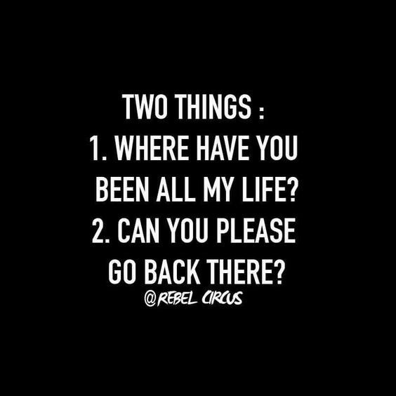 quote - Text - TWO THINGS: 1. WHERE HAVE YOU BEEN ALL MY LIFE? 2. CAN YOU PLEASE GO BACK THERE? @REBEL CRCUS