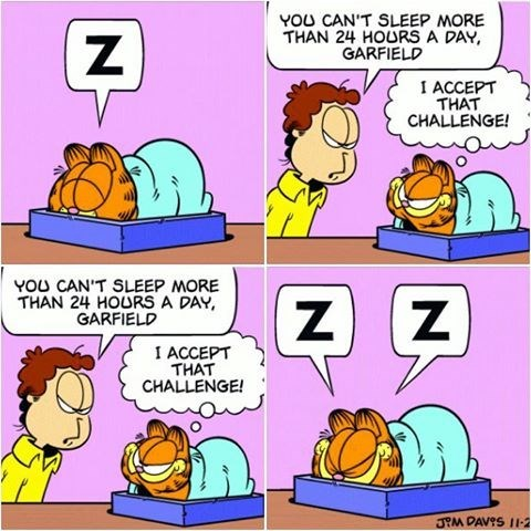 Cartoon - YOU CAN'T SLEEP MORE THAN 24 HOURS A DAY GARFIELD I ACCEPT THAT CHALLENGE! YOU CAN'T SLEEP MORE THAN 24 HOURS A DAY GARFIELD z Z Z I ACCEPT THAT CHALLENGE! JM DAVIS 11-2