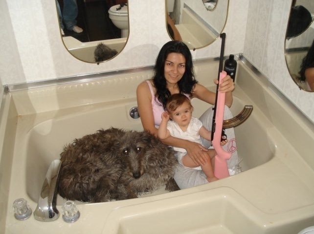 cursed image-woman, baby and a dog sitting in a tub with a pink shotgun