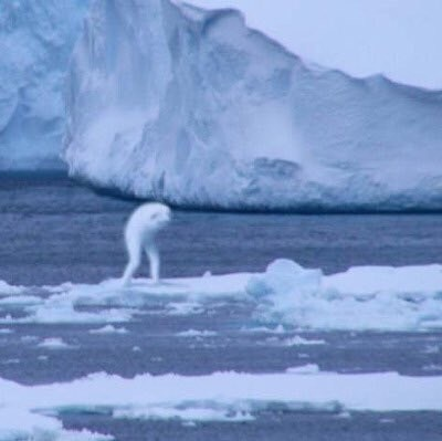 cursed image-creepy shape near an iceberg