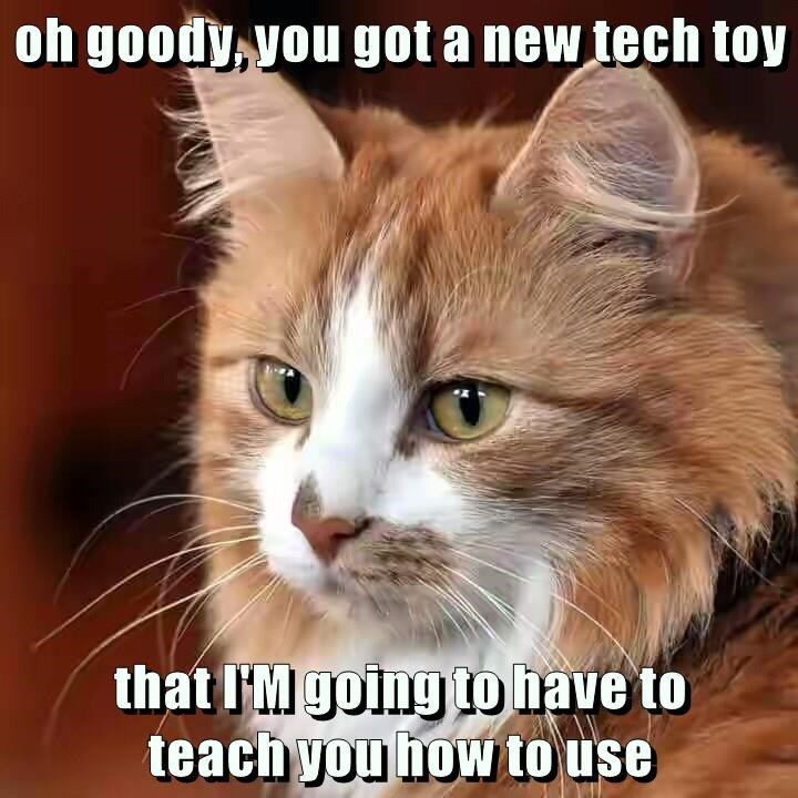 Lolcats - technology - LOL at Funny Cat Memes - Funny cat pictures ...