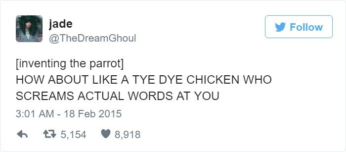 Text - jade @TheDreamGhoul Follow [inventing the parrot] HOW ABOUT LIKE A TYE DYE CHICKEN WHO SCREAMS ACTUAL WORDS AT YOU 3:01 AM 18 Feb 2015 5,154 8,918