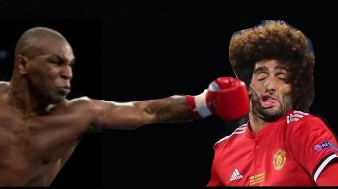 Professional boxer - RE adidos