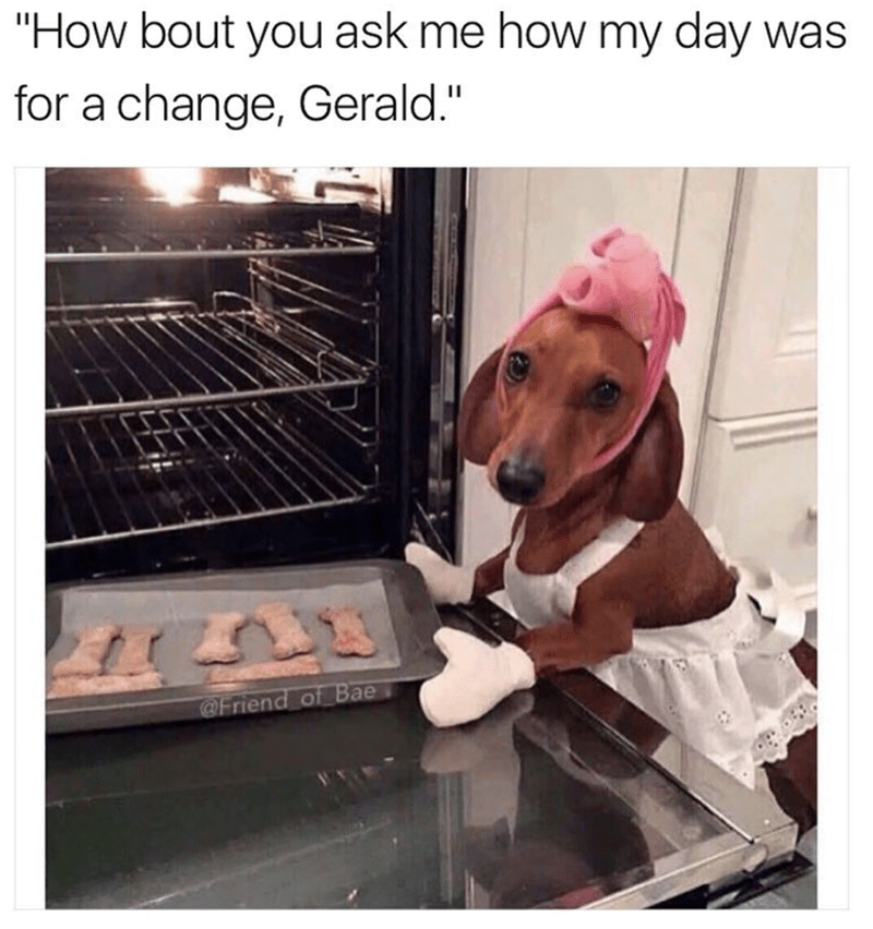 """meme - Dog - """"How bout you ask me how my day was for a change, Gerald."""" @Friend of Bae"""