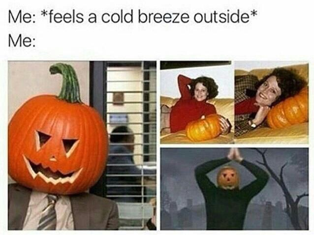 Pumpkin - Me: *feels a cold breeze outside* Me: