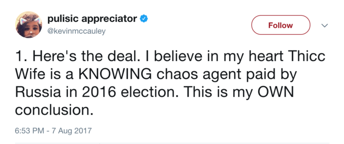 Text - pulisic appreciator @kevinmccauley Follow 1. Here's the deal. I believe in my heart Thicc Wife is a KNOWING chaos agent paid by Russia in 2016 election. This is my OWN conclusion 6:53 PM -7 Aug 2017