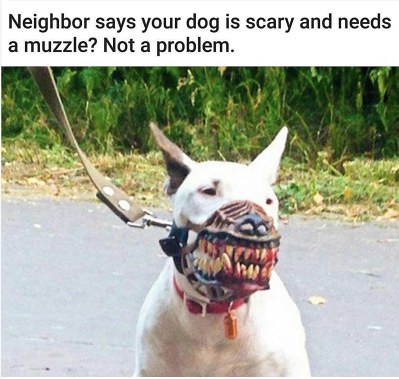 Canidae - Neighbor says your dog is scary and needs a muzzle? Not a problem.