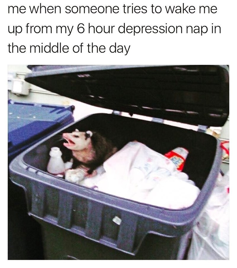 funny meme about depression naps and photo of opossum in a dumpster.