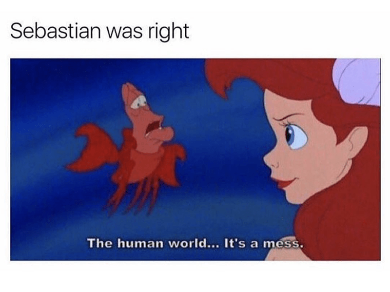 Little mermaid meme about human's being a mess