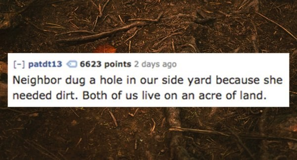 Text - - patdt13 6623 points 2 days ago Neighbor dug a hole in our side yard because she needed dirt. Both of us live on an acre of land.