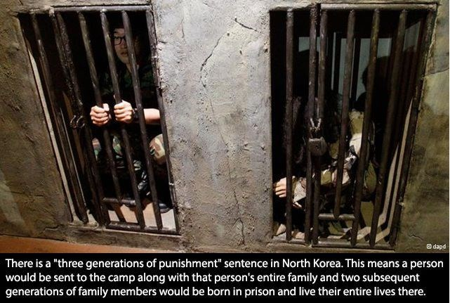 "Metal - Gdapd There is a ""three generations of punishment"" sentence in North Korea. This means a person would be sent to the camp along with that person's entire family and two subsequent generations of family members would be born in prison and live their entire lives there."