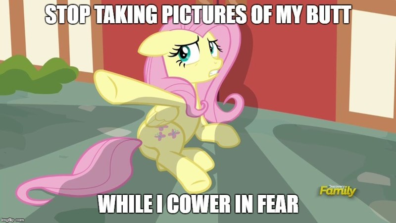 screencap fluttershy fame and misfortune - 9064141568