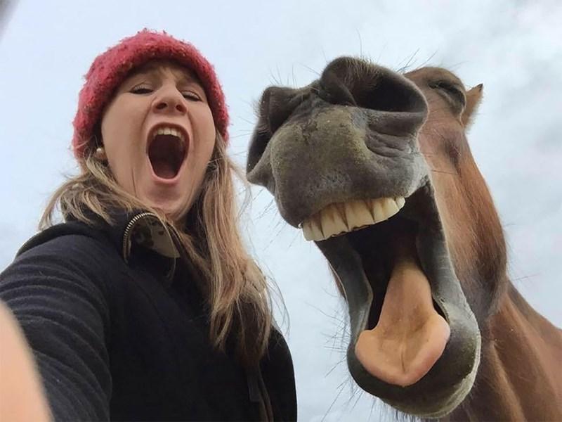 funny pet pics - Facial expression