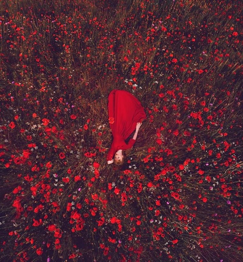 Red dress in poppy field in Crimea