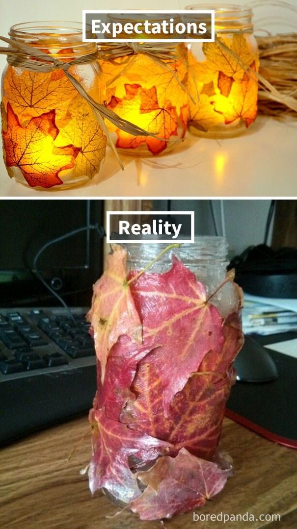 Leaf - Expectations Reality boredpanda.com
