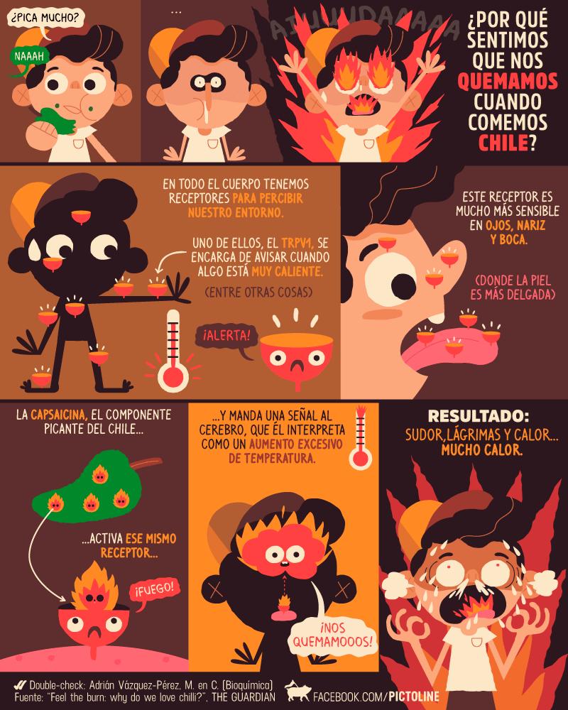 explicacion por que sentimos picante cuando comemos