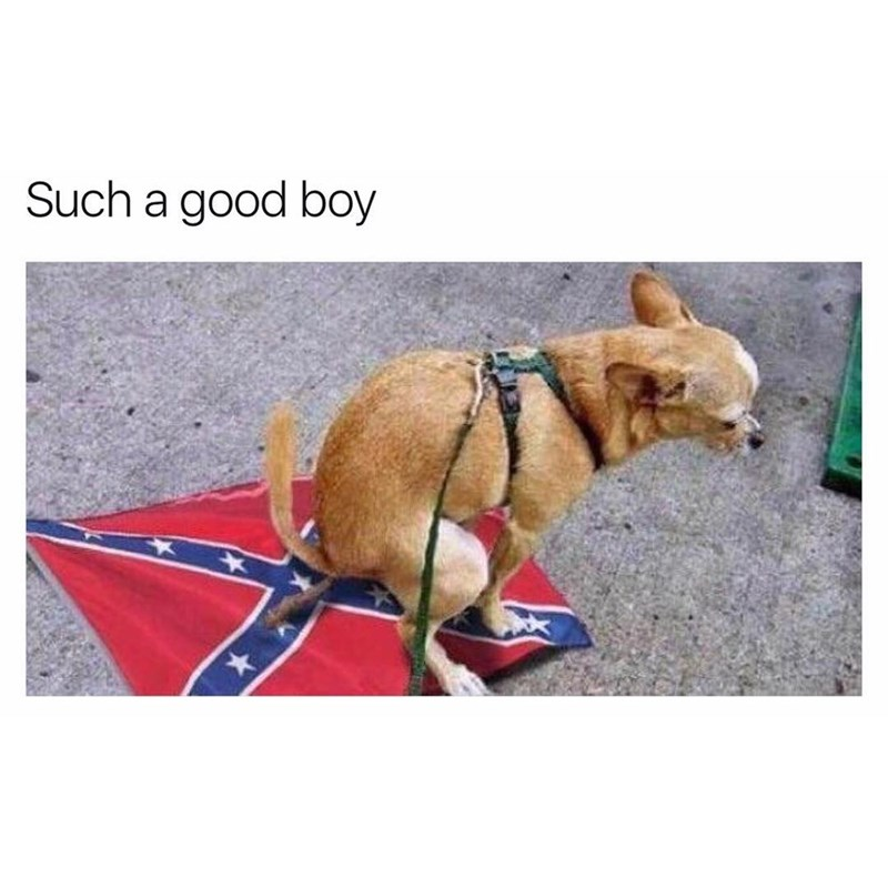 Meme of dog pooping on confederate flag.