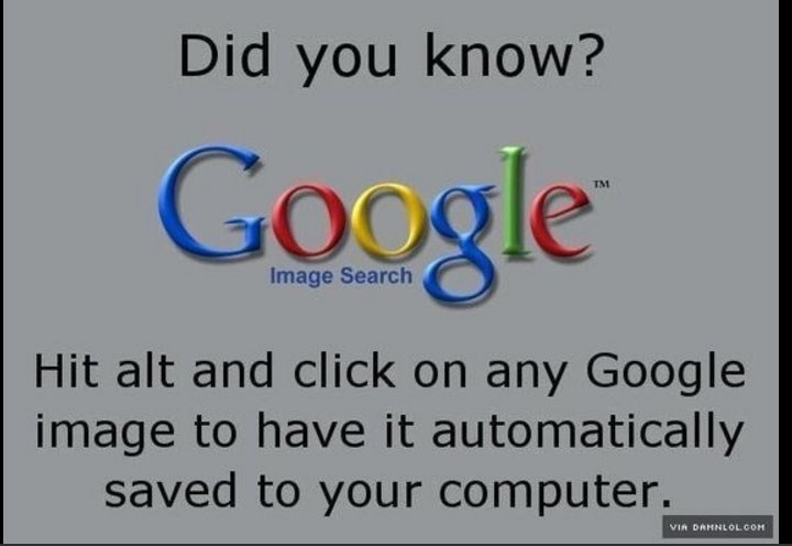 Text - Did you know? Google TM Image Search Hit alt and click on any Goog le image to have it automatically saved to your computer. VIA DAHNLOLCOM