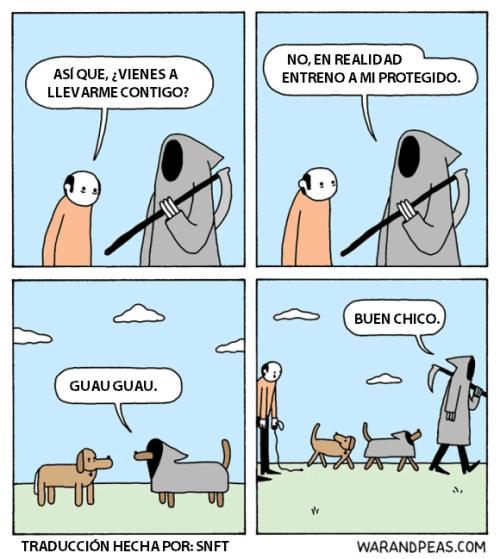 la muerte llega pero se lleva al perro
