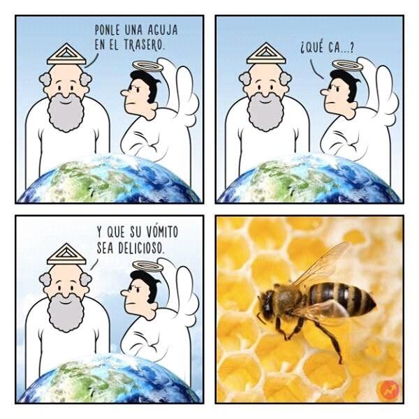 cuando dios creo a las abejas