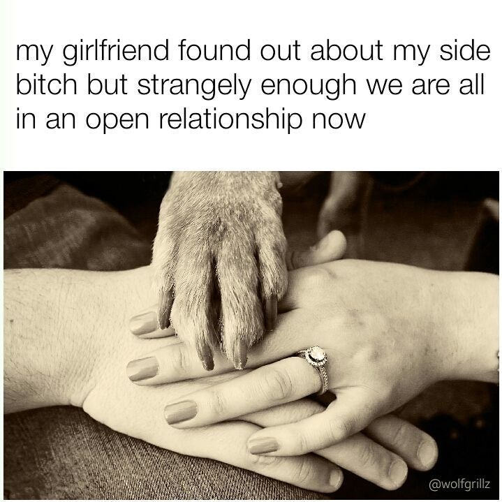 Funny meme about a dog entering the relationship.