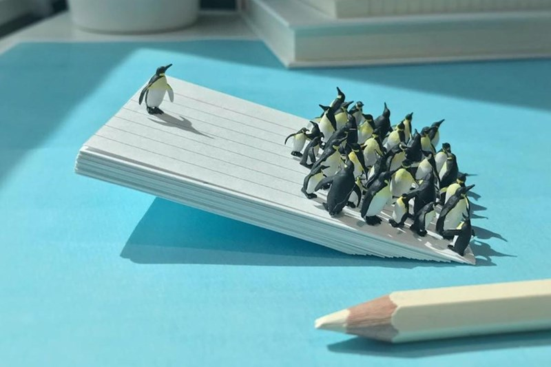 Penguins on a plate of ice with all of them to on side causing it to list