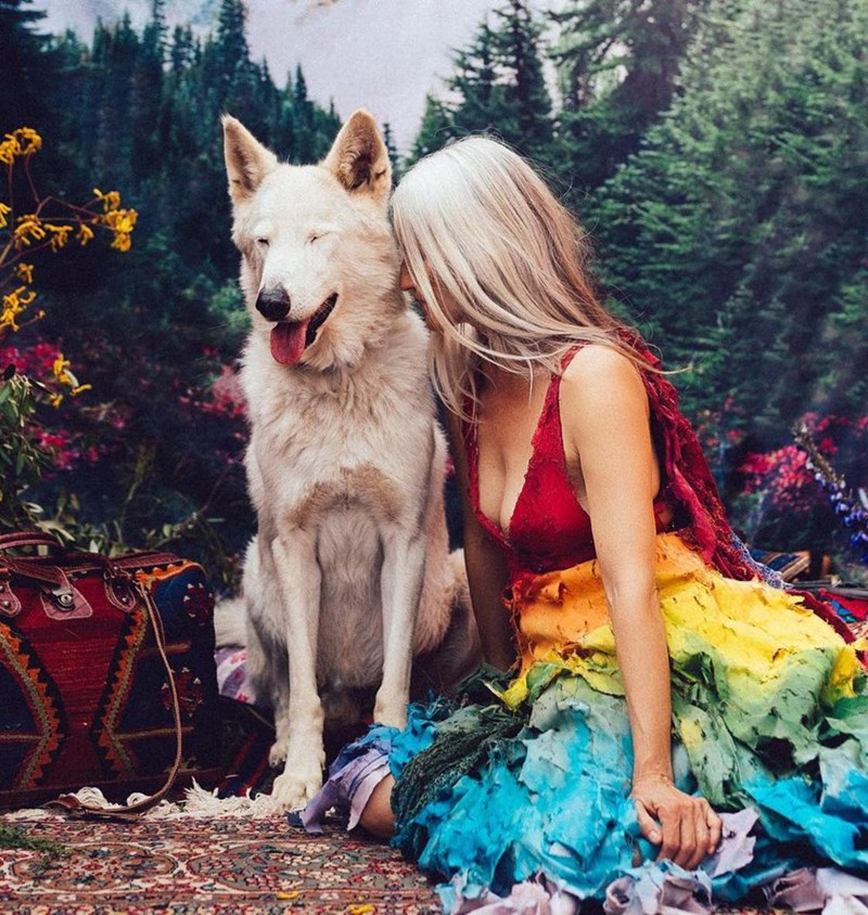 rescued animals - Dog