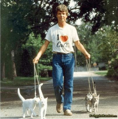 Dog - Car iggiakandon