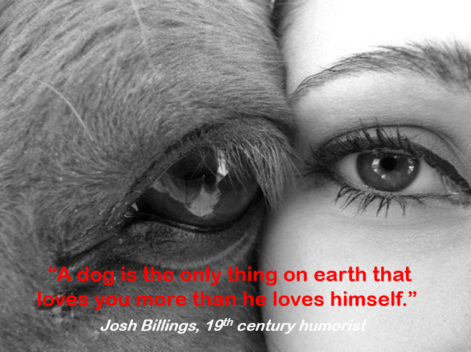 """Eye - dogis the cmy thing on earth that nhe loves himself."""" Josh Billings, 19th century humorist More t"""