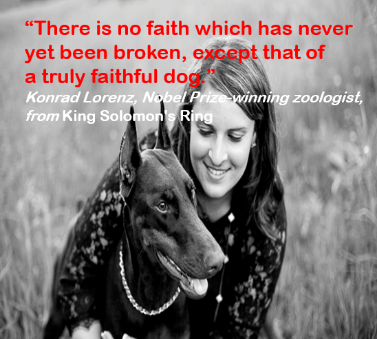 """Dog - """"There is no faith which has never yet been broken, except that of a truly faithful dog Konrad Lorenz, Nobel Prize winning zoologist, from King Solomon's Ring"""