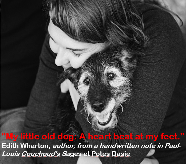 """Dog breed - M little old dog A heart beat at my feet."""" Edith Wharton, author, froma handwritten note in Paul- Louis Couchoud's Sages et Potes Dasie"""