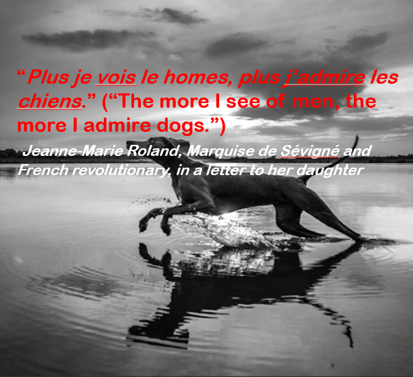 """Water - 'Plus je vois le homes, plus chiens."""" (""""The more I see more l admire dogs."""") Jeanne-Marie Roland, Marquise de Sévigné and French revolutionary, in a letter-to her daughter e les the"""