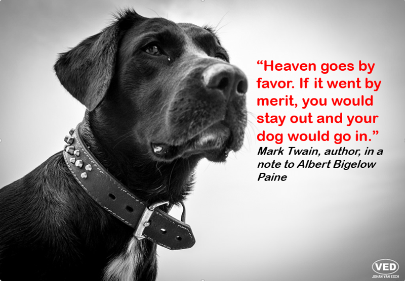 """Dog - """"Heaven goes by favor. If it went by merit, you would stay out and your dog would go in."""" Mark Twain, author, in a note to Albert Bigelow Paine VED JOHAN VAN ESCH"""