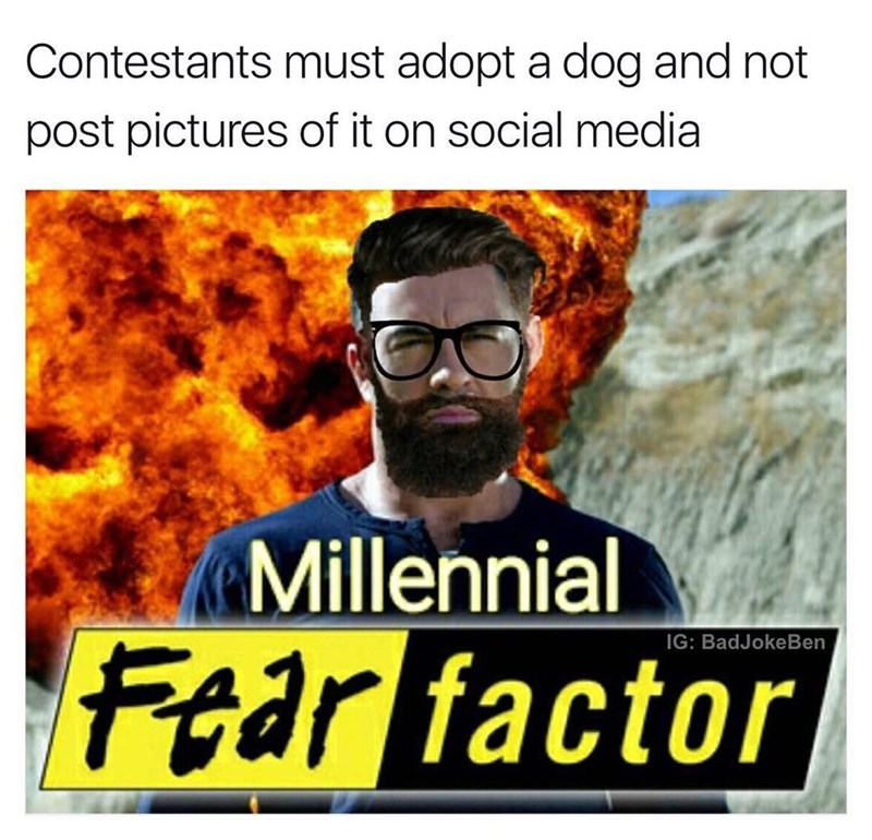 Funny meme about millennials being unable to have a dog and not post pictures of it.