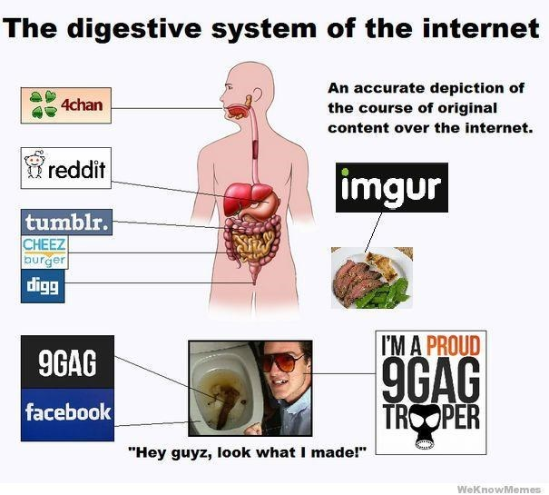 """Organ - The digestive system of the internet An accurate depiction of the course of original 4chan content over the internet. reddit imgur tumblr. CHEEZ burger digg I'M A PROUD 9GAG 9GAG TROOPER facebook """"Hey guyz, look what I made!"""" WeKnowMemes"""