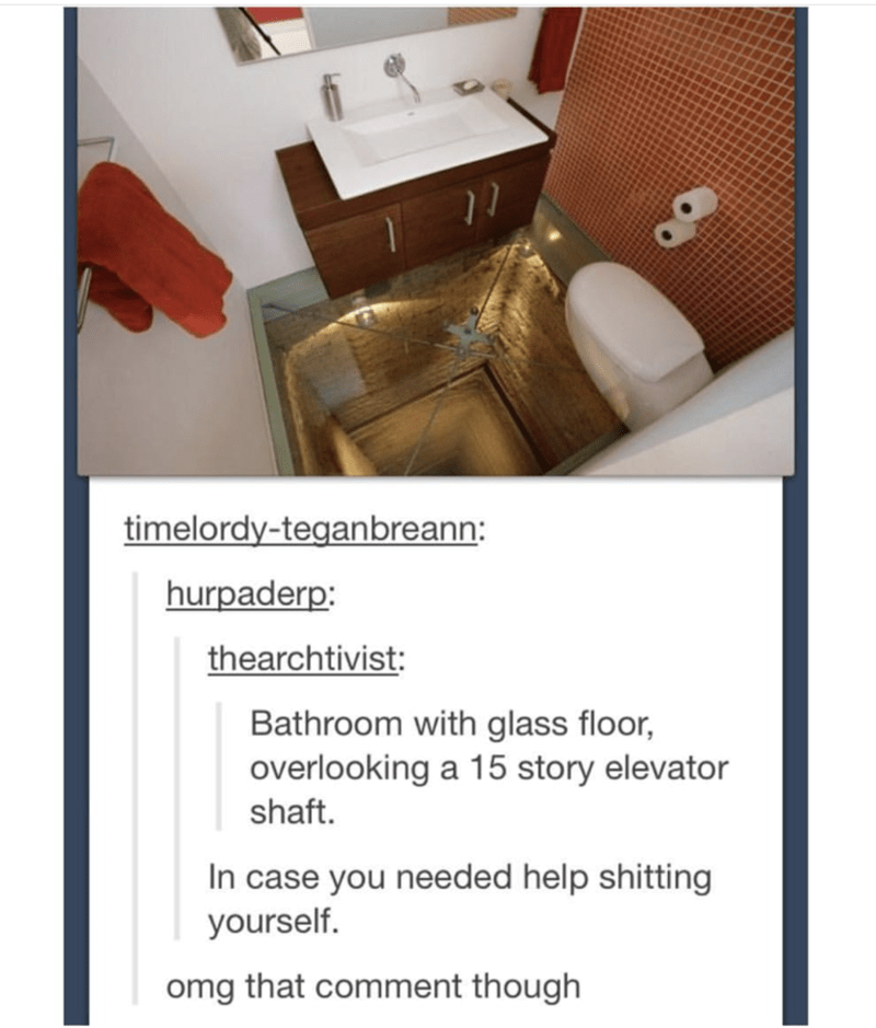 Product - timelordy-teganbreann: hurpaderp: thearchtivist: Bathroom with glass floor, overlooking a 15 story elevator shaft. In case you needed help shitting yourself. omg that comment though