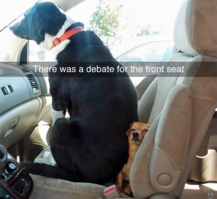 Vehicle door - There was a debate for the front seat