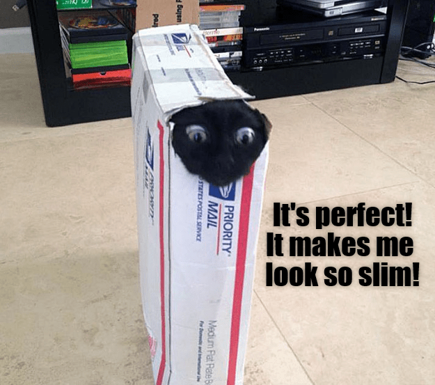 Product - er It's perfect! It makes me look so slim! PRIORITY MAIL Medium Flat RateB STATES POSTAL SERVICE pae