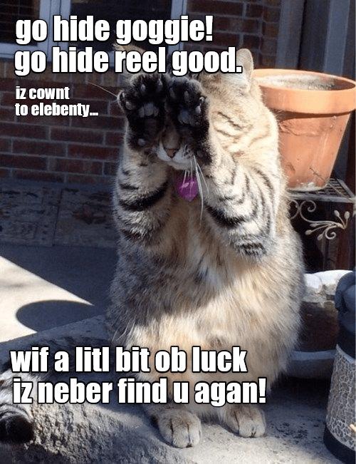 Photo caption - go hide goggie! go hide reel goods iz CoWnt to elebenty. wif a litl bitob luck iz neber find u agan!