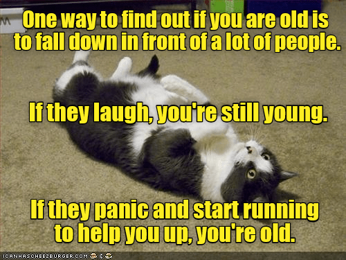 Photo caption - One way to find out if you are oldis to fall down in front of a lot of people. If they laugh, youte still young. If they panic and startrunning to help you up, you're old. ICANHASCHEEZEURGER OOM