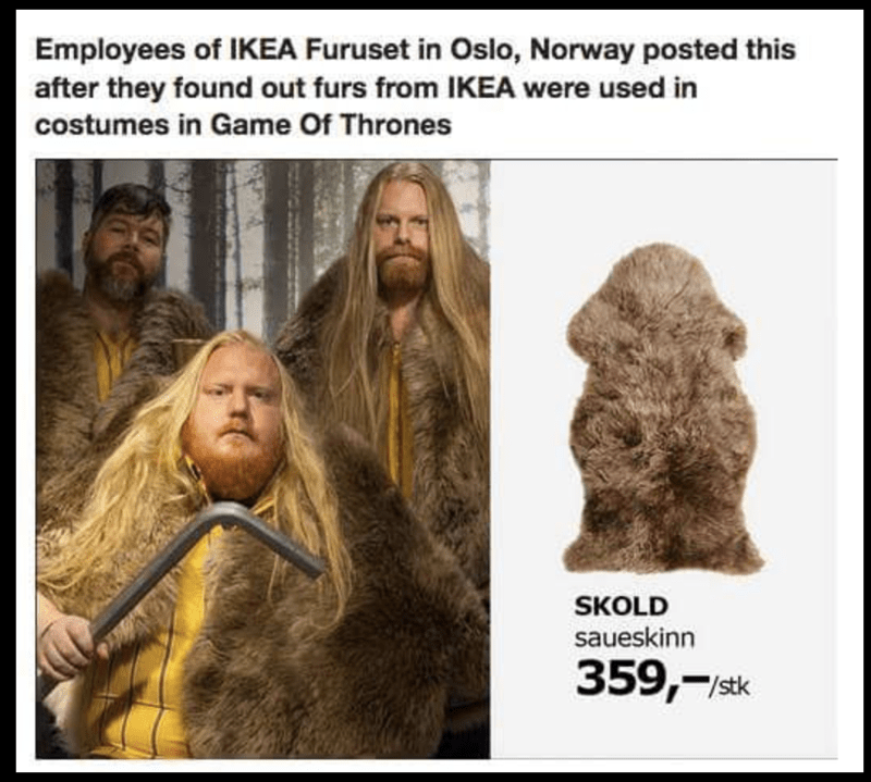 funny meme of IKEA Employees in Oslo pose with Skold fur after learning it was used in Game Of Thrones.