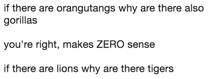 Text - if there are orangutangs why are there also gorillas you're right, makes ZERO sense if there are lions why are there tigers