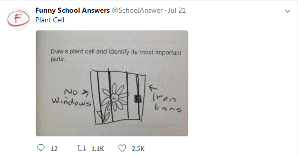 Text - Funny School Answers @SchooIAnswer Jul 21 Plant Cell Draw a plant cell and identify its most important parts. No W.ndows 6ars 2.5K t 1.1K 12