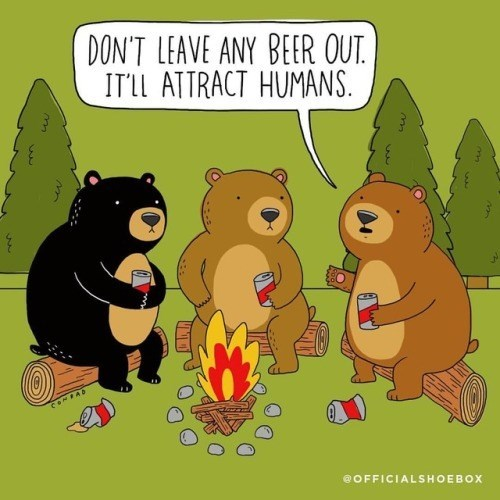 Comics of bears camping out and warning to not leave out any beers, as it might attract humans.