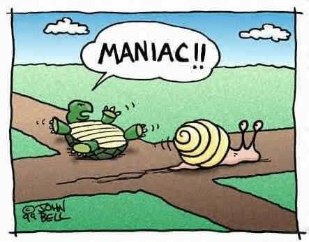 comics of turtle in a race