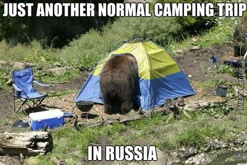 animal meme - Plant community - JUST ANOTHER NORMAL CAMPING TRIP IN RUSSIA Memecenter.c